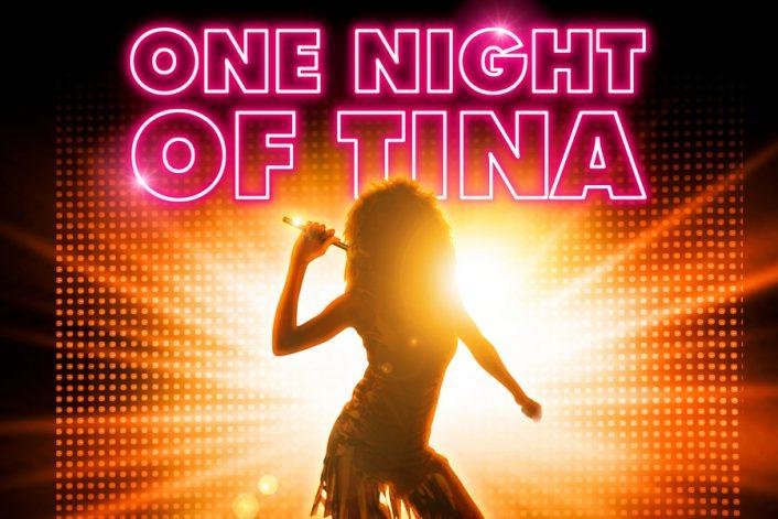 Заказать Tina Turner tribute show на корпоратив, свадьбу, День города в букинг-агентстве BnMusic