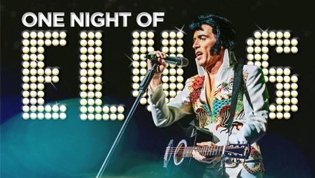Заказать выступление Elvis Presley Tribute (Lee Memphis King) в BnMusic